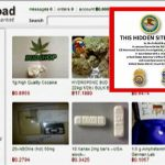 Silk road, Ross Ulbricht